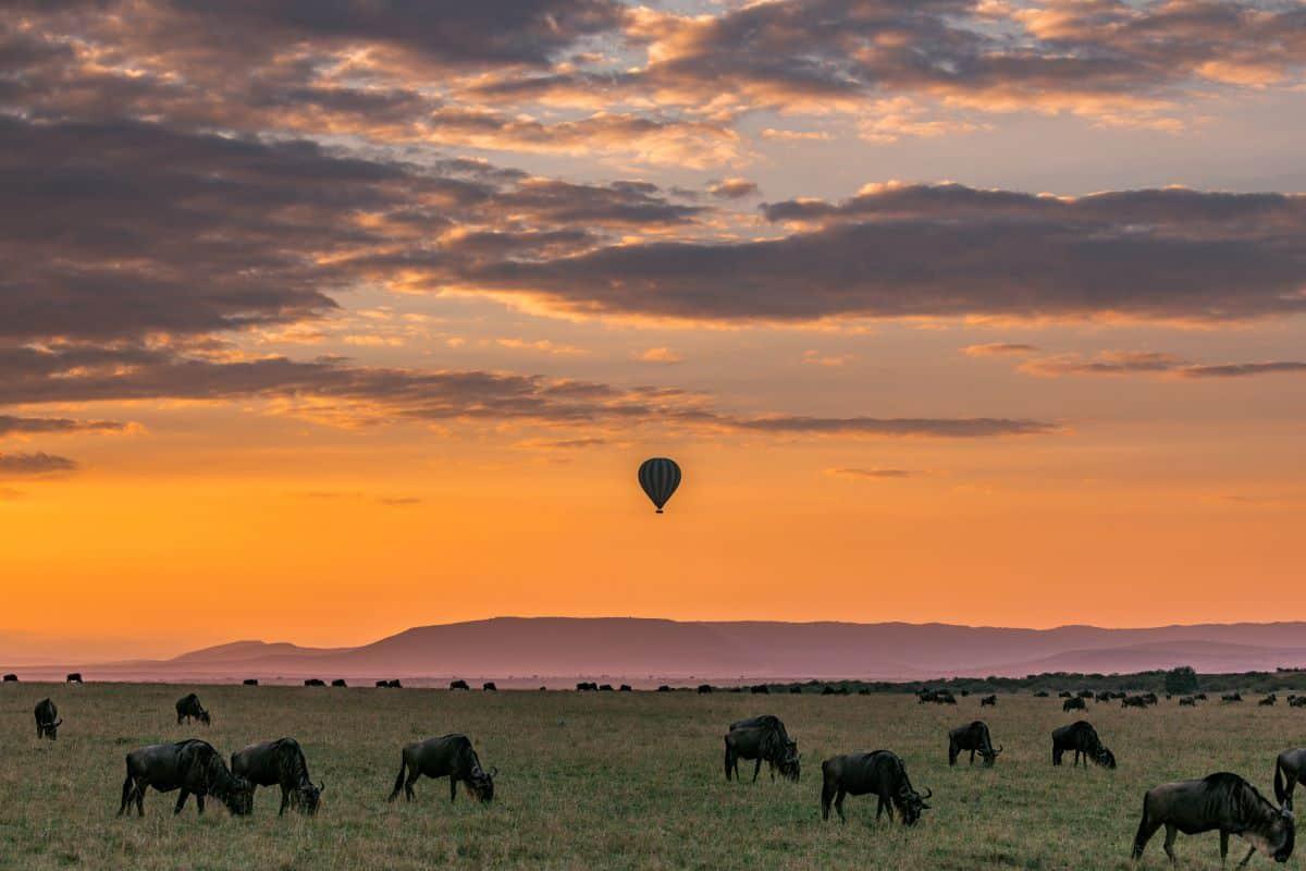 vol en montgolfière botswana