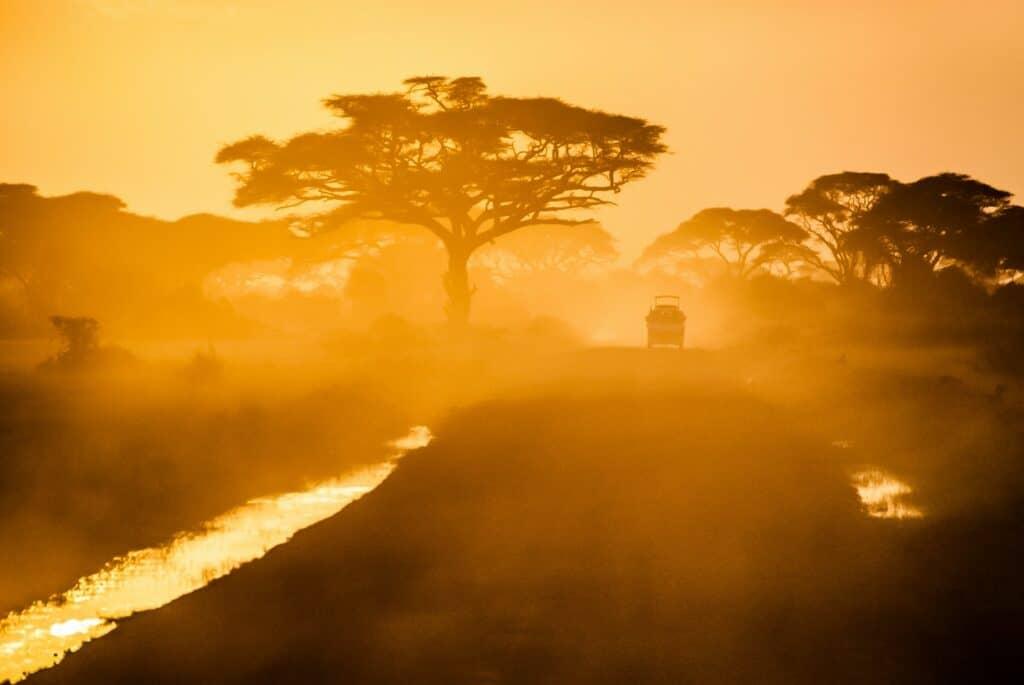 Safari au Parc du Waterberg